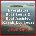 Everglades Boat Tours and Boat Assisted Kayak Eco Tours